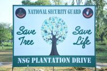 Plantation Drive 2021