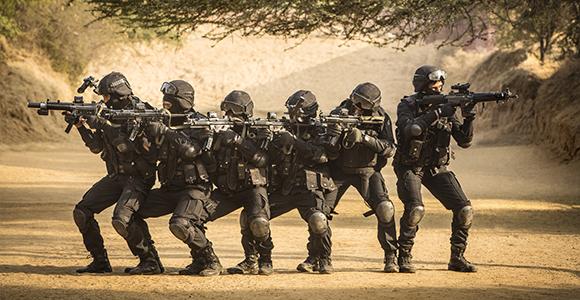 राष्ट्रीय सुरक्षा गारद